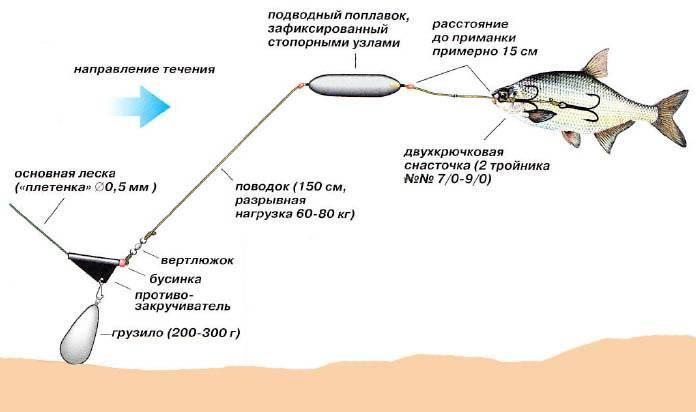 Рыбалка на сома в подробностях: выбор места, описание оснастки на сома, изготовление снасти для ловли рыбы