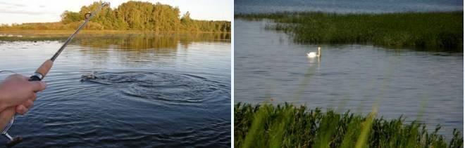 - подробный прогноз клёва и погоды в тольятти на 3 дня и 15 дней