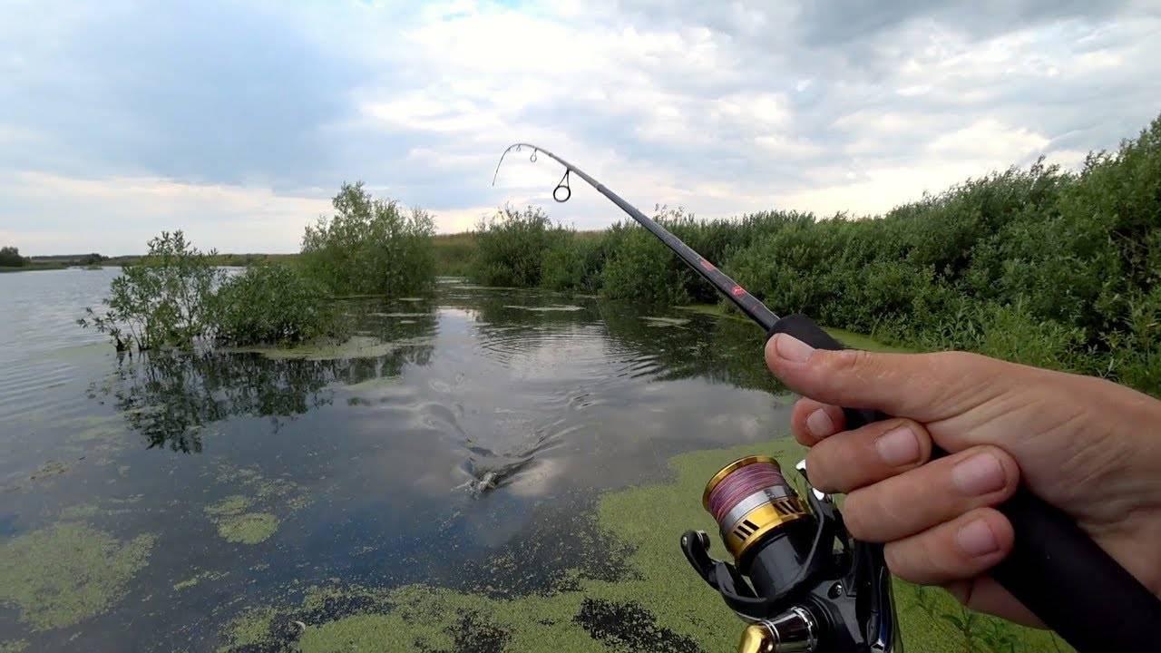 Рыбалка в подольском районе в 2017 году