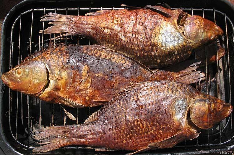 Как коптить рыбу: рецепты и способы приготовления копченой рыбы в домашних условиях