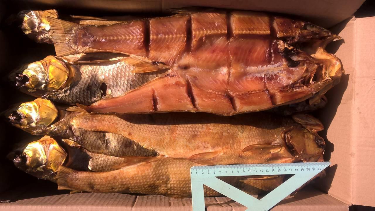 Рыба холодного копчения: технология приготовления в домашних условиях, сколько коптить по времени