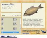 Густера - описание рыбы, образ жизни, как ловить, рецепты, фото и видео