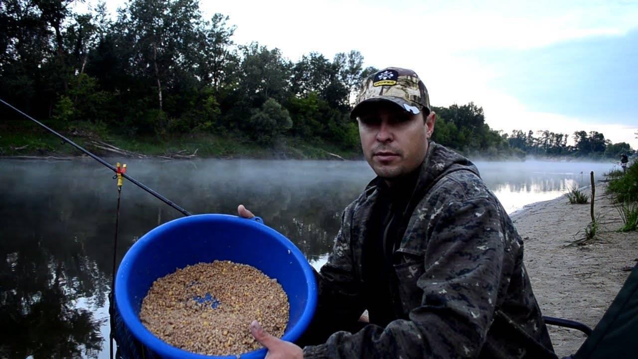 Рабочие наживки и насадки для ловли леща на фидер