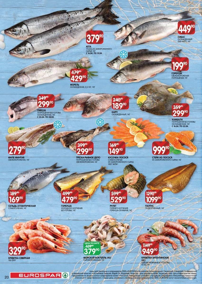 Рыба «Спар белый» фото и описание