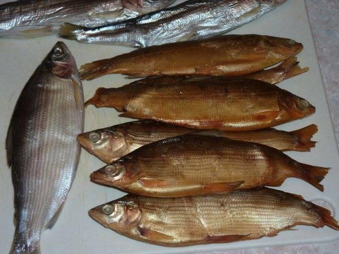 Рыба сырок (пелядь)