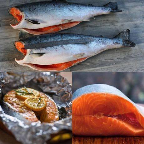 Кижуч: что это за рыба, где водится, польза и вред