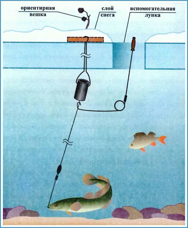 Снасть на судака: какую лучше использовать для ловли на живца с берега, популярные виды для ловли зимой, осенью и летом