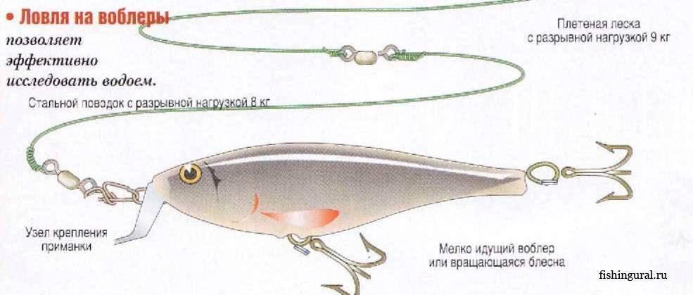 Воблеры на судака: виды, когда использовать и как выбрать