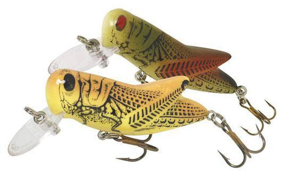 Ловля трофейной рыбы на кузнечика: отличная летняя приманка на головля