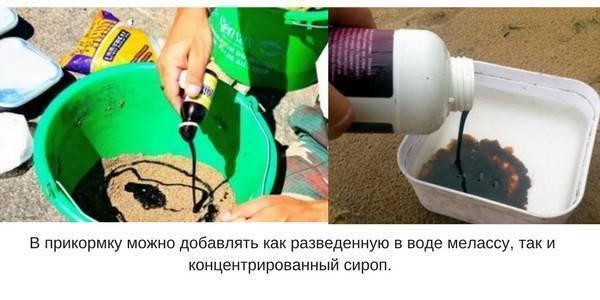 Рыболовная меласса: что это и как использовать в прикормке