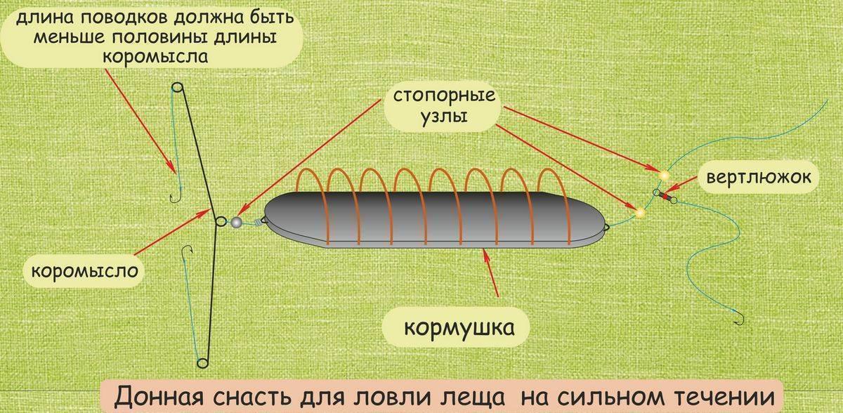 ✅ ловля карпа на кружки конструкция - рыбзон.рф