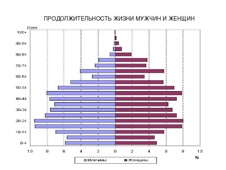 Сколько лет живут собаки в домашних условиях — таблица средней продолжительности жизни по породам
