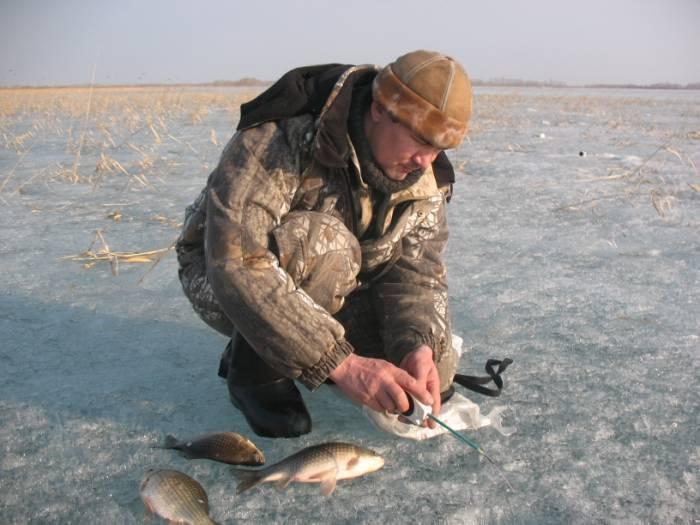 Как поймать карася зимой – секреты и методы рыбалки [2019]
