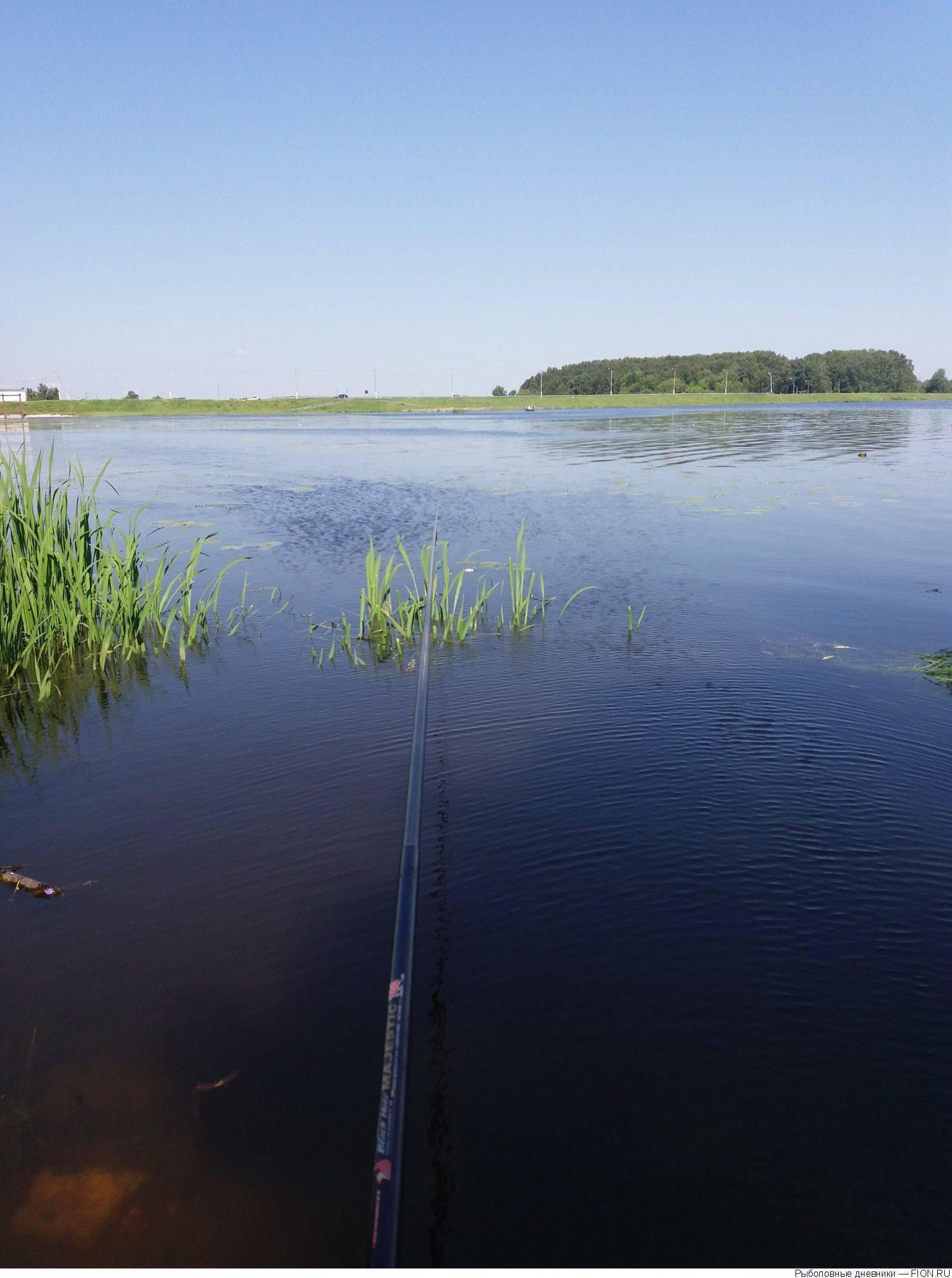 Рыбные места в костромской области и костроме и запрет