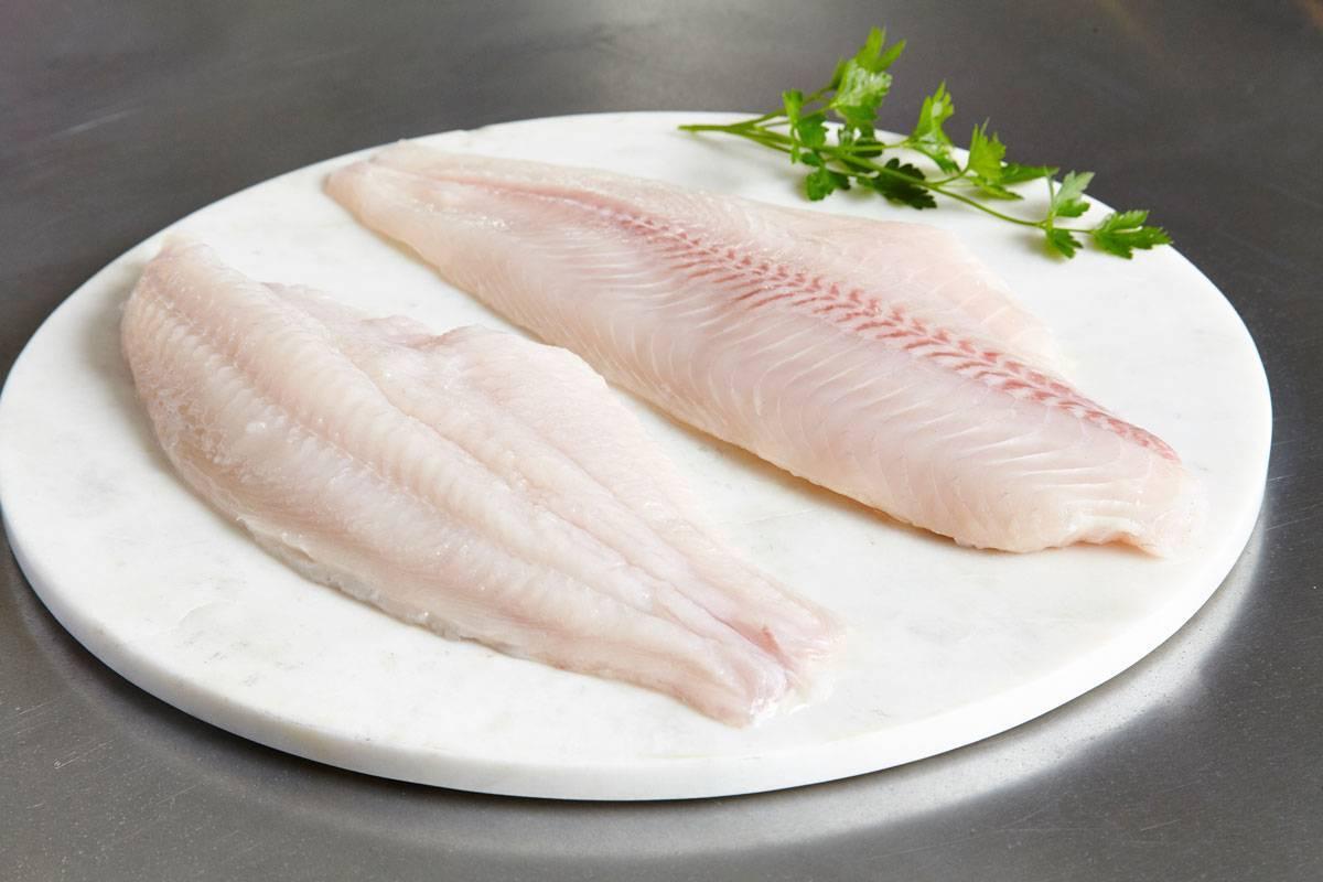 Рыба морской язык: другие названия, главные отличия от пангасиуса, популярные рецепты приготовления