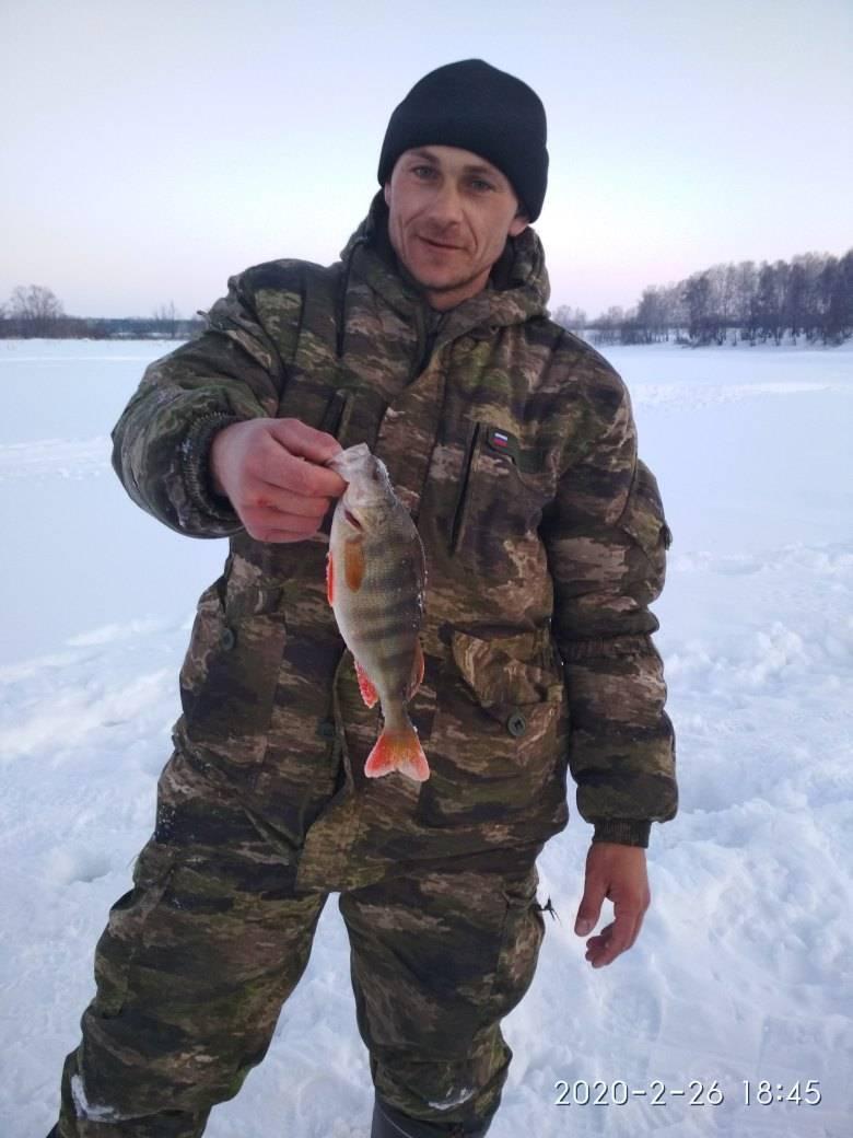 Самые рыбные места в алтайском крае и сезонный запрет