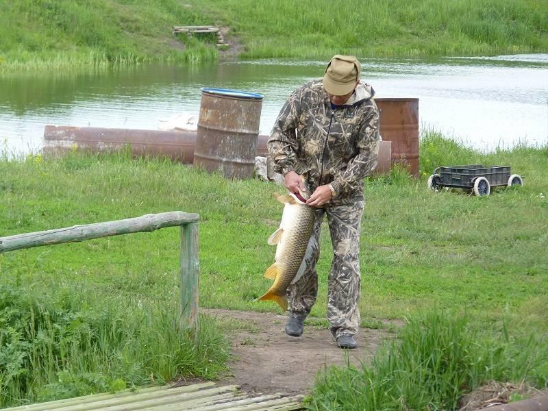 Нерестовый запрет 2020. челябинская область. новый закон о рыбалке