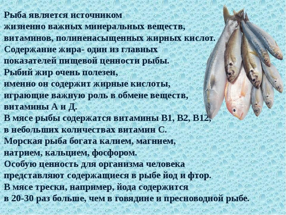 Деликатесная рыба простипома
