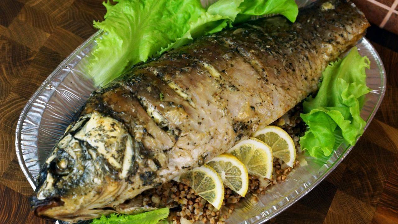 Карп в духовке – 9 рецептов как вкусно запечь рыбу