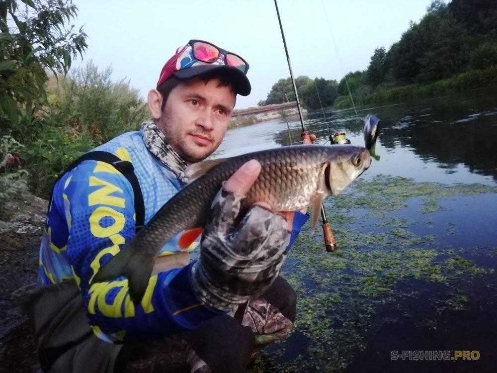 Отчет о рыбалке спиннингом на голавля в декабре