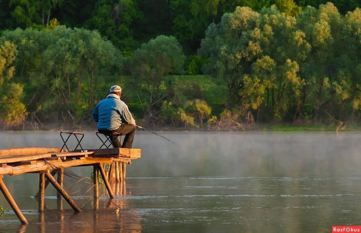 Особенности местной рыбалки. где ловить, и куда делась рыба?