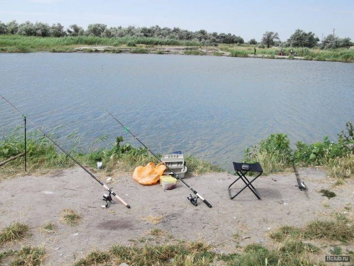 Рыбалка в Ростове-на-Дону — лучшие рыболовные базы
