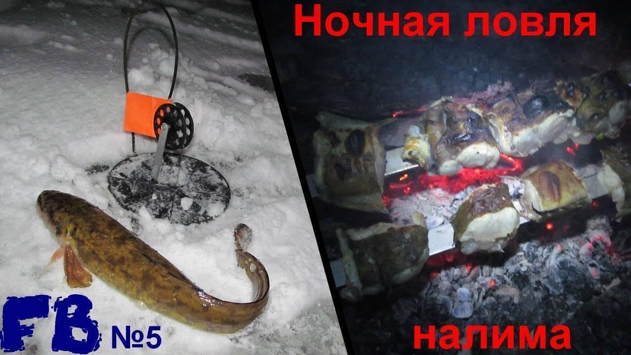 Ловля налима на жерлицы зимой | atmhunt - вестник охотника и рыбака