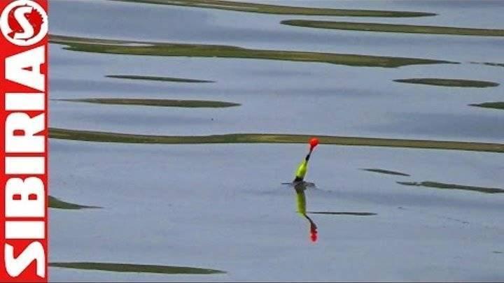 Ловля карася в сентябре на поплавочную удочку, как ловить на поплавок