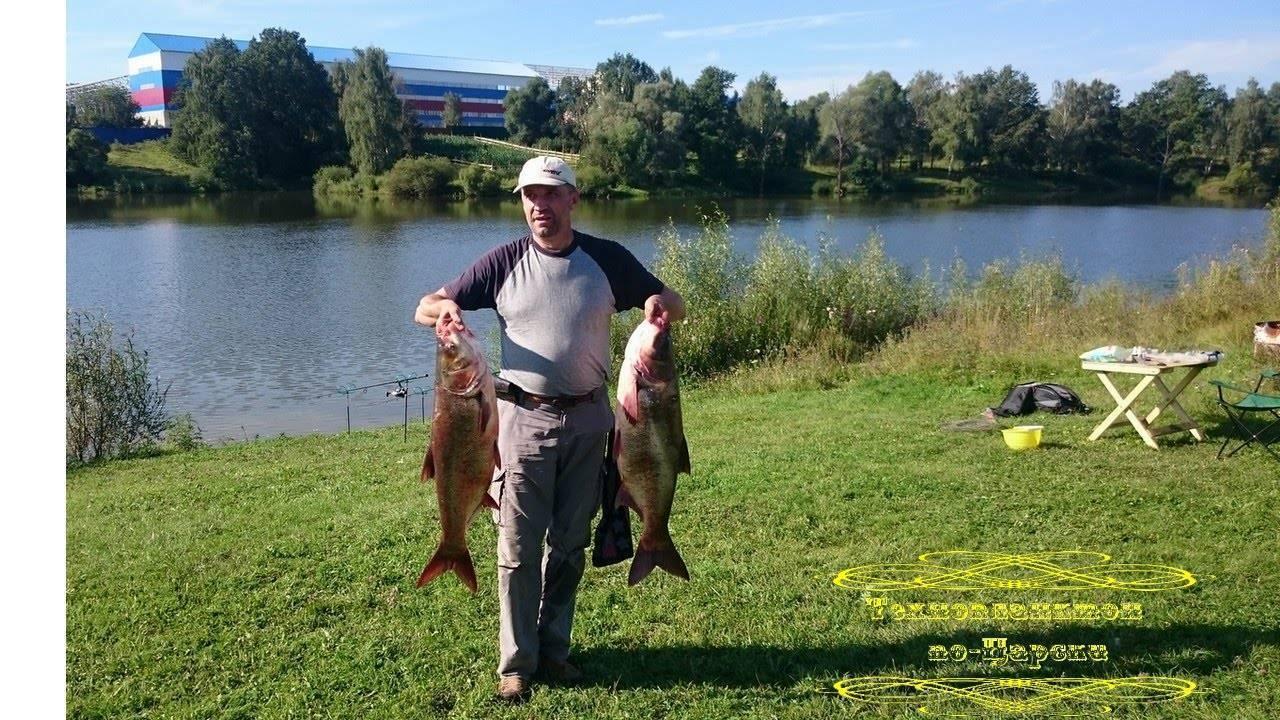 На рыбалку: толстолобик