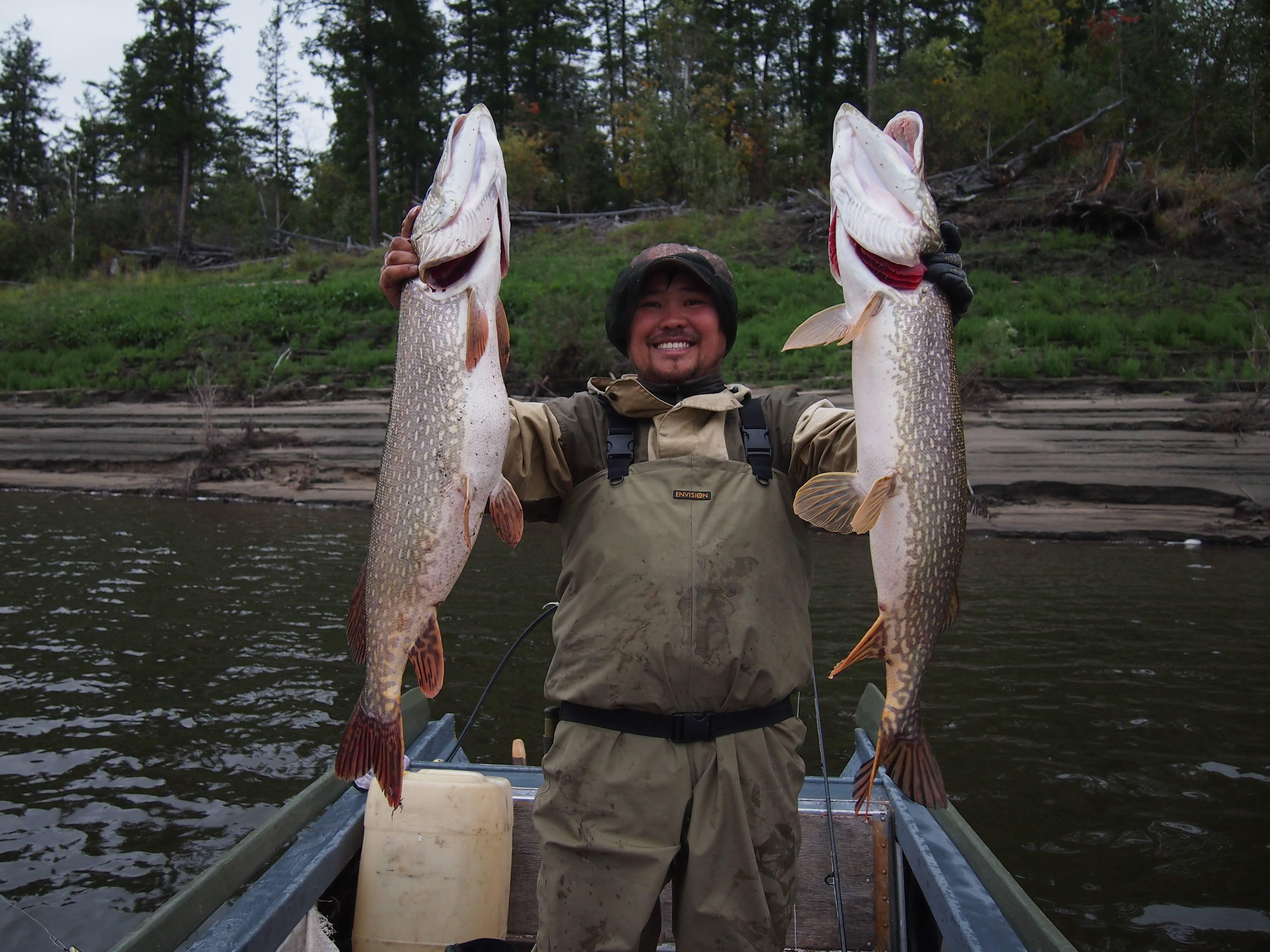 Река лена — описание, география, природа, рыбалка, фото и видео