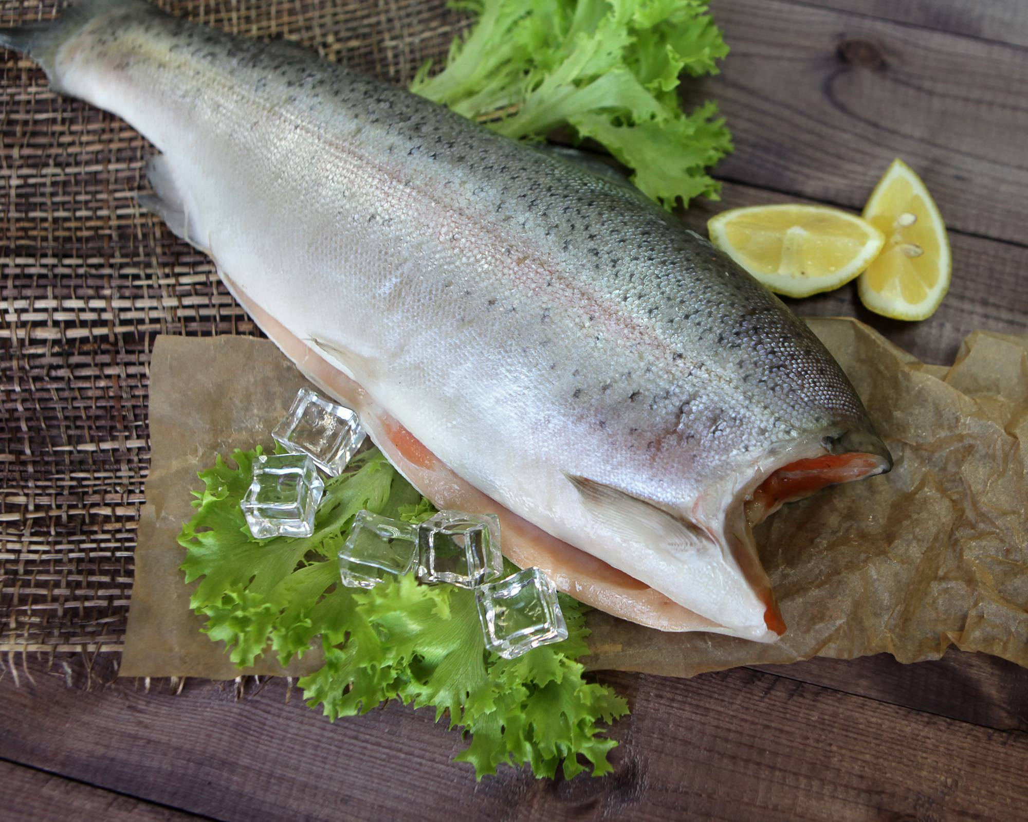 Кижуч - полезные свойства и фото красной рыбы, рецепты с ней
