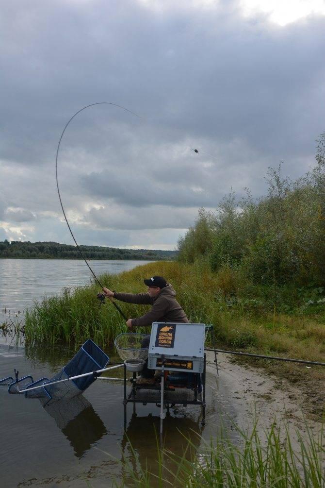 Рыбалка в мордовии зимой и другие сезоны года, какая рыба водится в суре