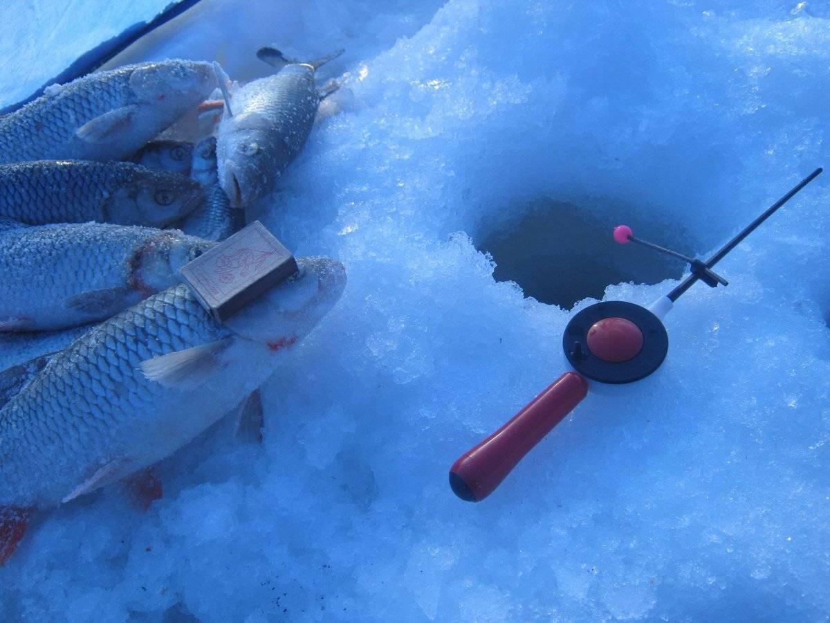 Рыбалка по первому льду: особенности ужения и меры безопасности