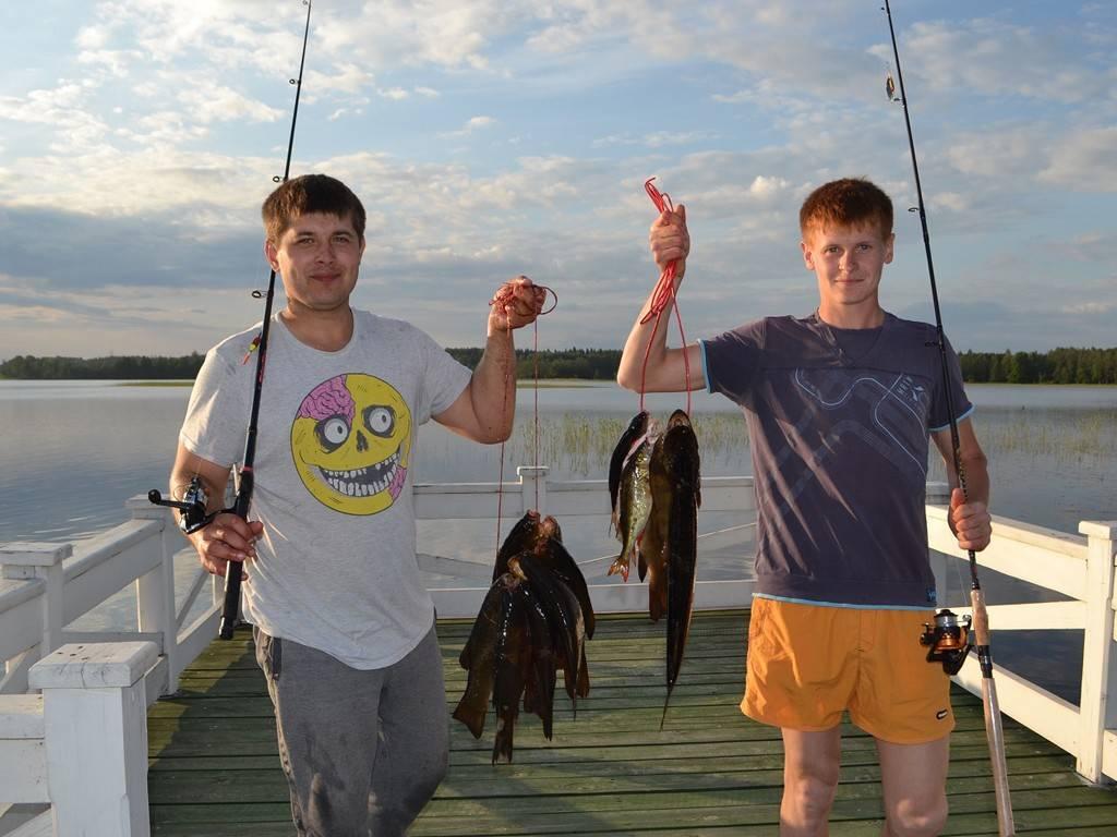 Нерестовый запрет 2020 тверская область. новый закон о рыбалке