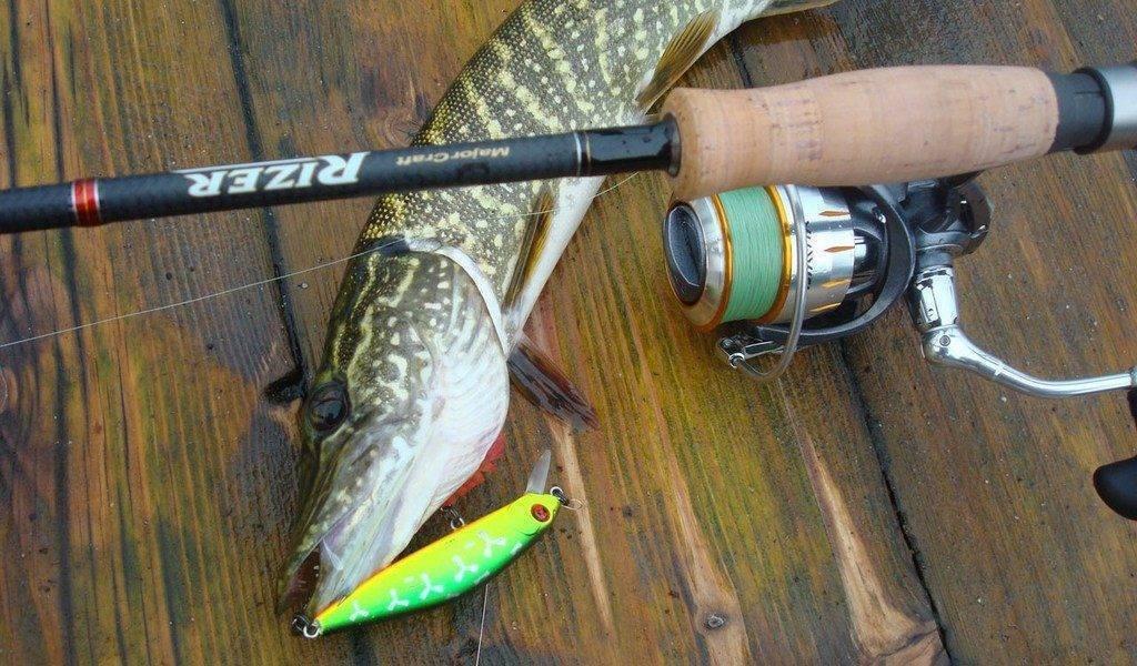 Рыбалка на спиннинг | спиннинг клаб - советы для начинающих рыбаков спиннинг для троллинга на реке - рейтинг топ 5 удилищ