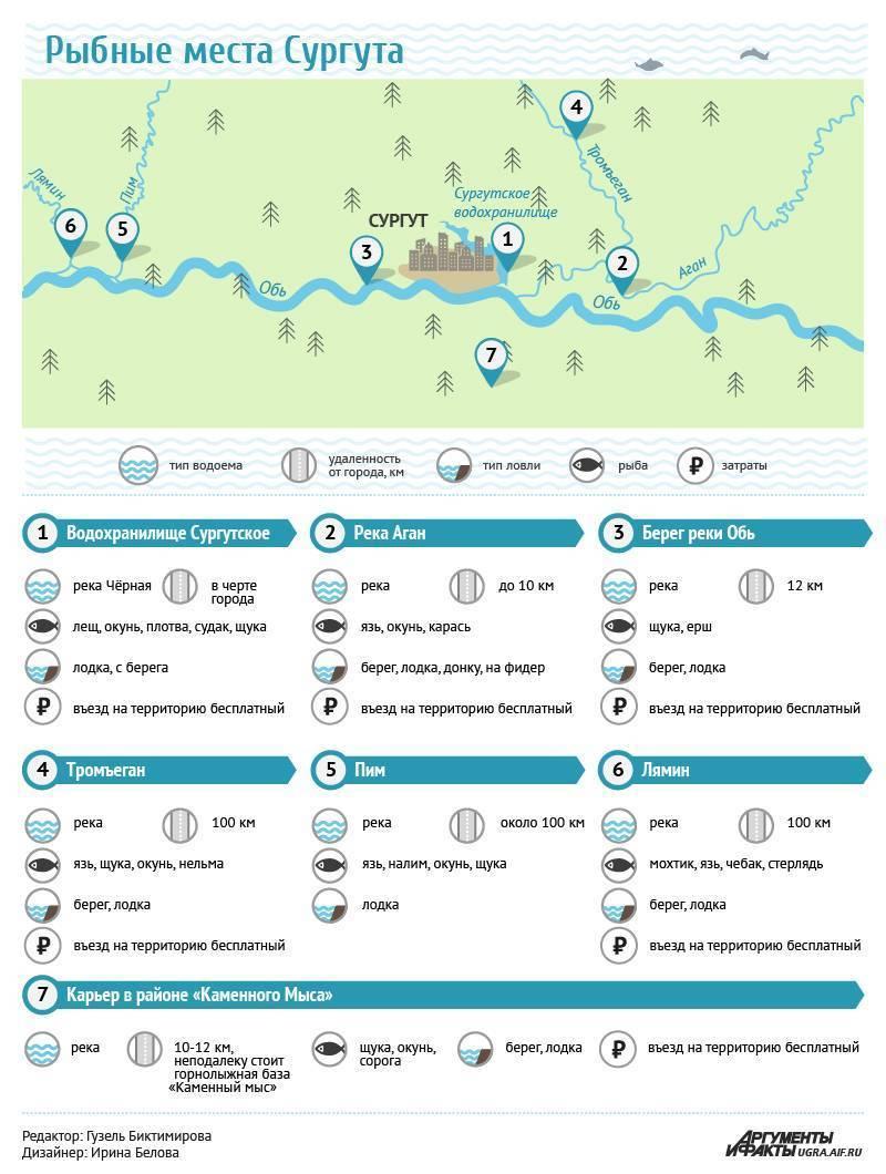 Рыбалка в сургуте и сургутском районе: где можно рыбачить? куда поехать ловить карася? ловля стерляди на оби и другие рыболовные места