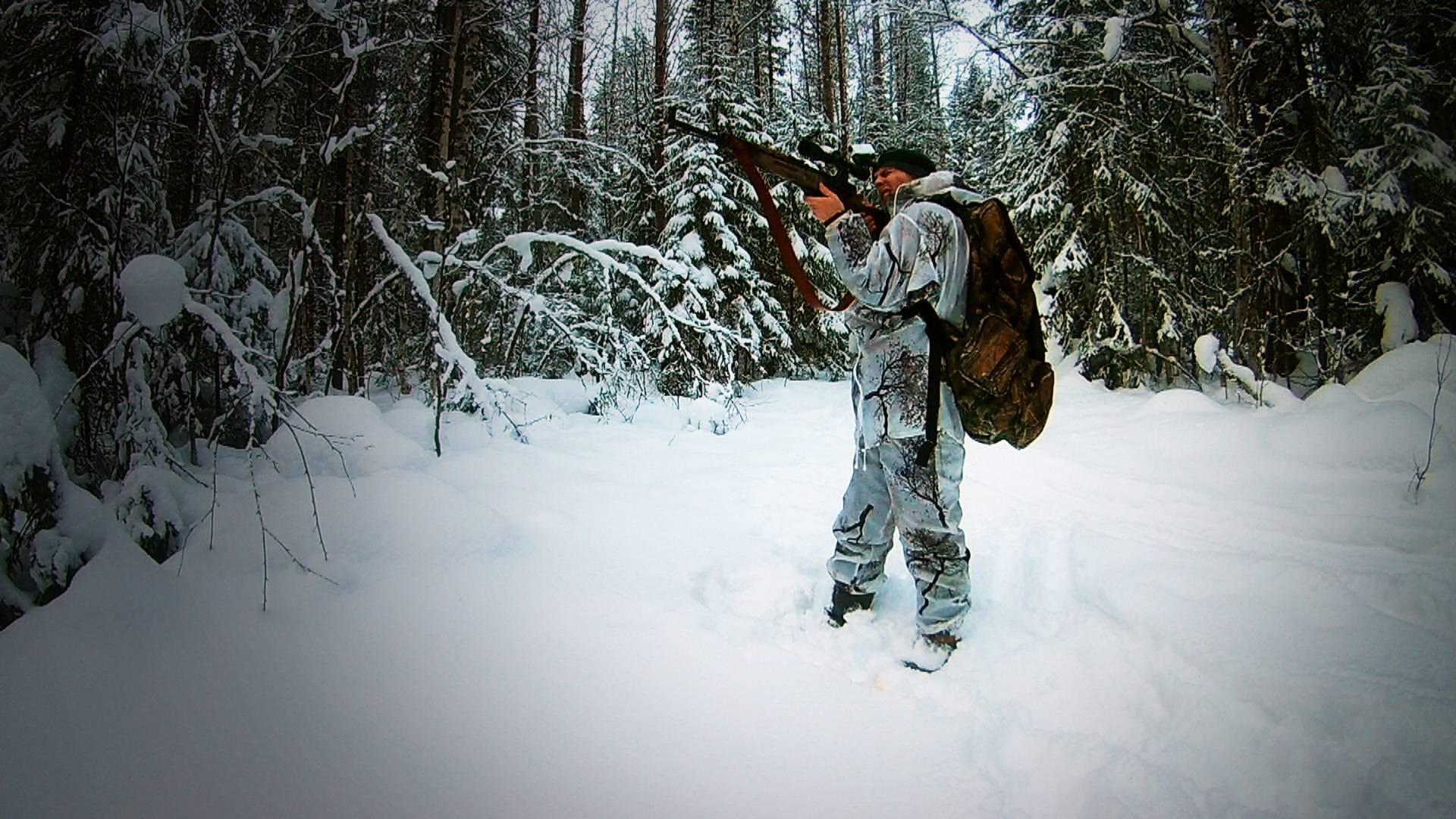 Охота на тетерева зимой: основные способы и выбор времени