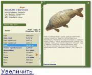 Список белой рыбы с описанием и фото