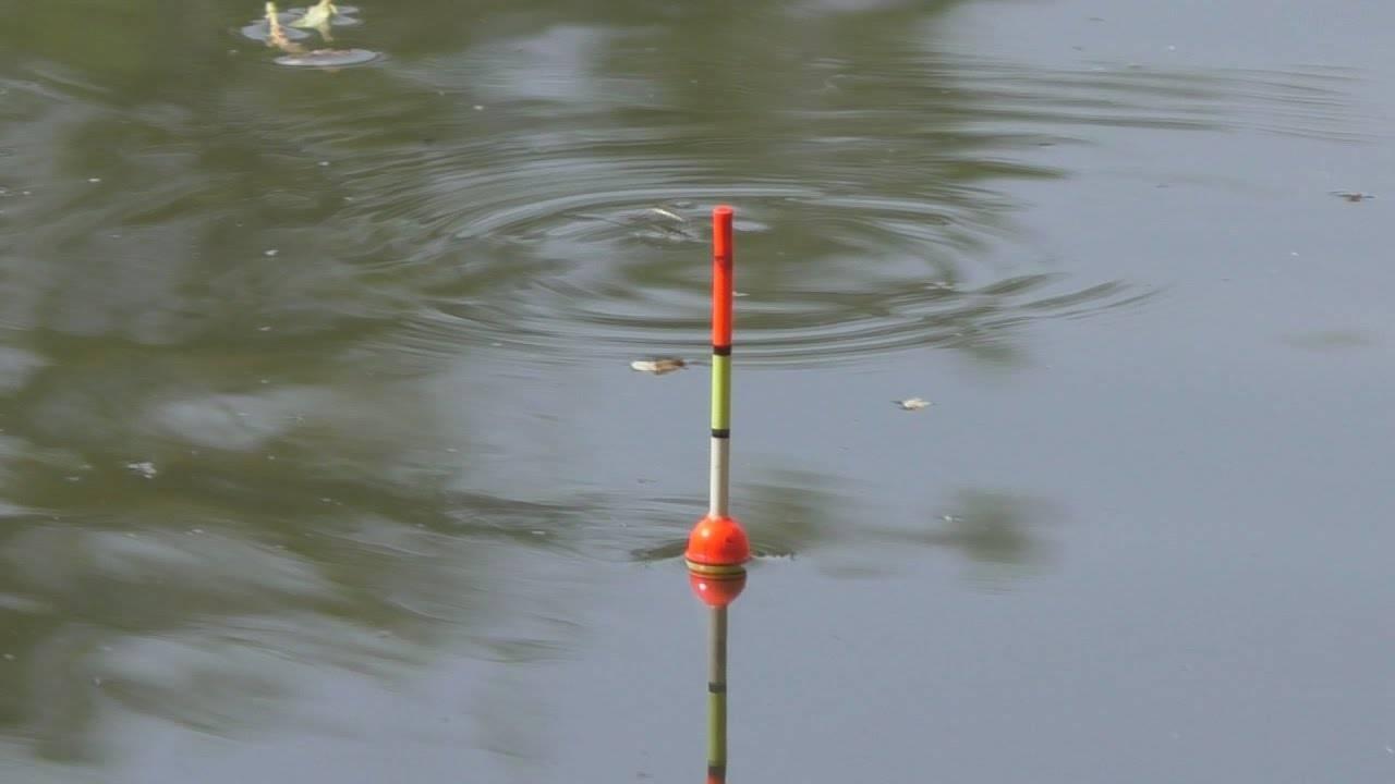 Ловля карася на поплавочную удочку: оснастка, как правильно ловить на снасть летом