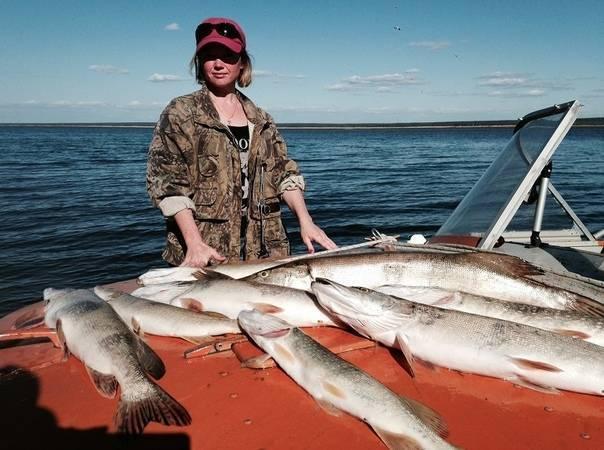 Рыбалка в республике саха (якутия): лучшие места на карте