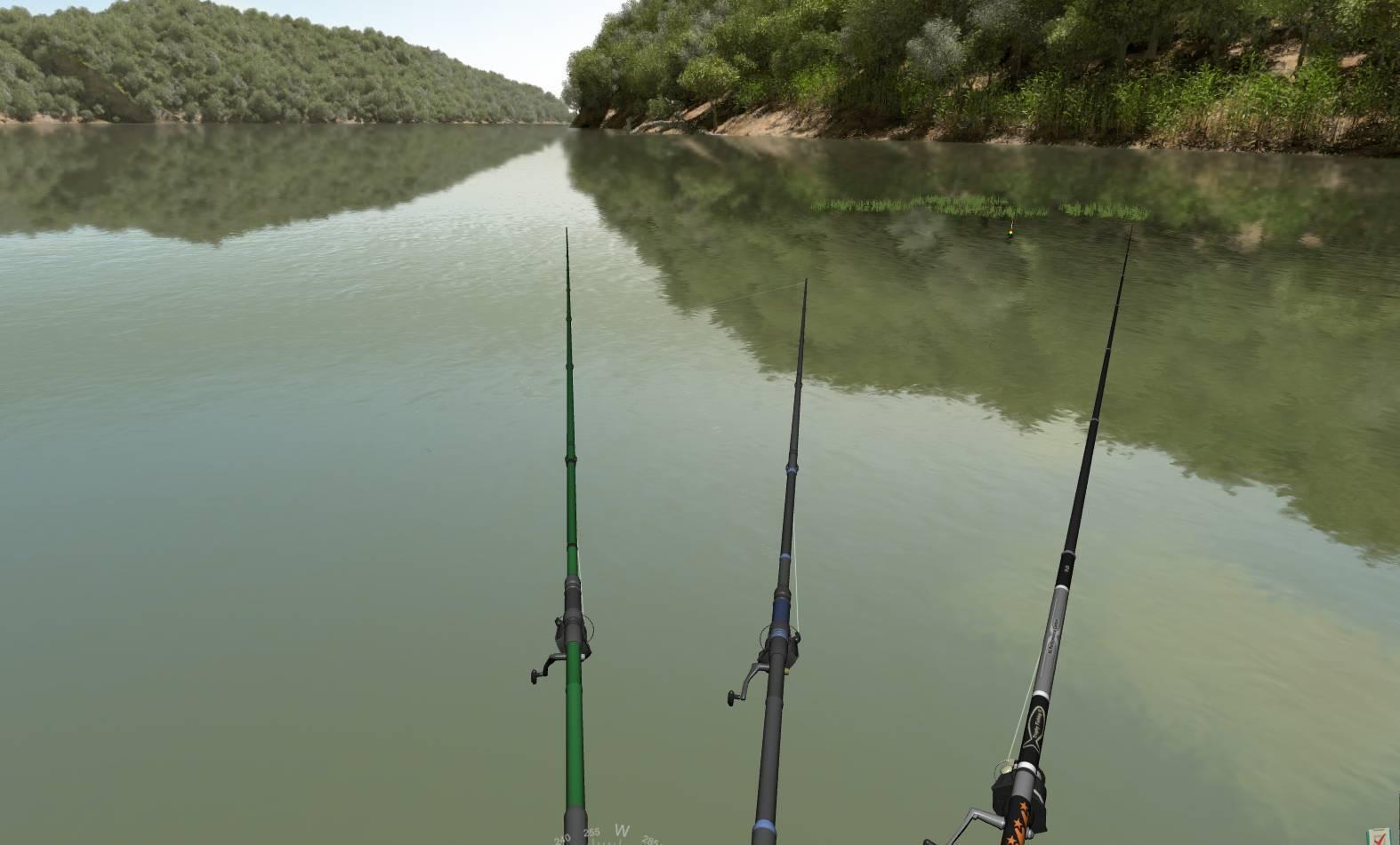 Что такое трофейная рыбалка / особенности ловли рыб