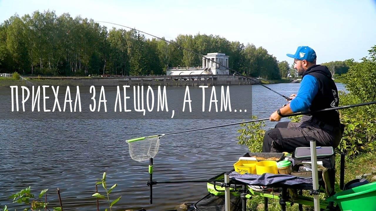 Плотва на канале им. москвы