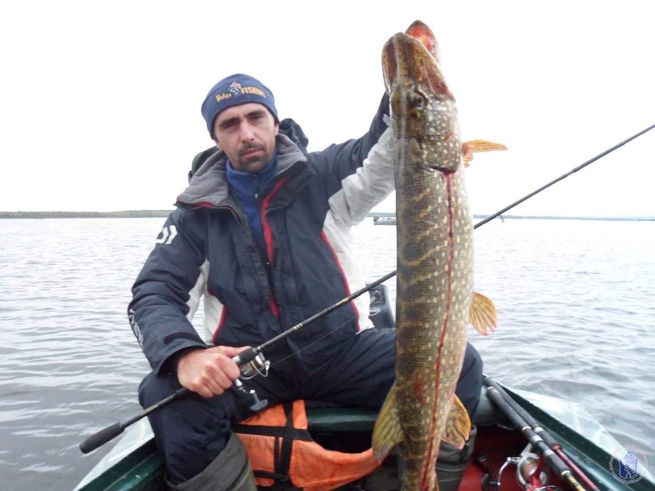 Правила рыболовства в нижегородской области