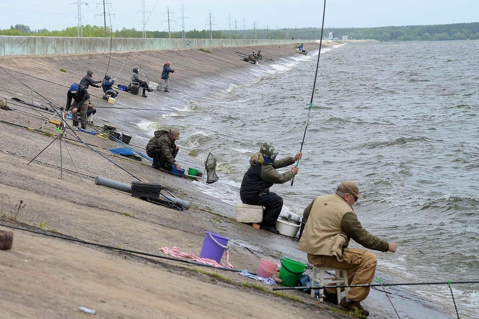 Рыбалка в липецкой области: лучшие места на карте топ-6