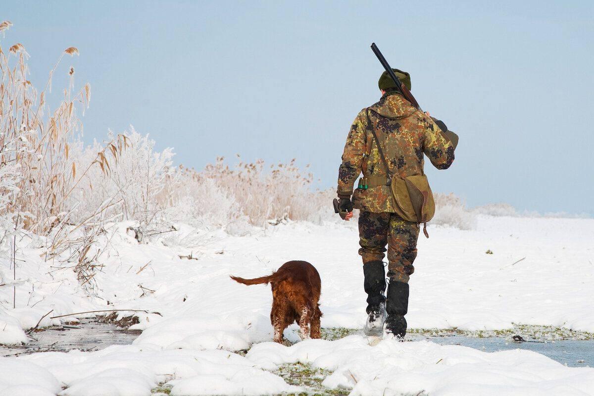 Виды охоты: классификация, описание, особенности, правовые нормы - truehunter.ru