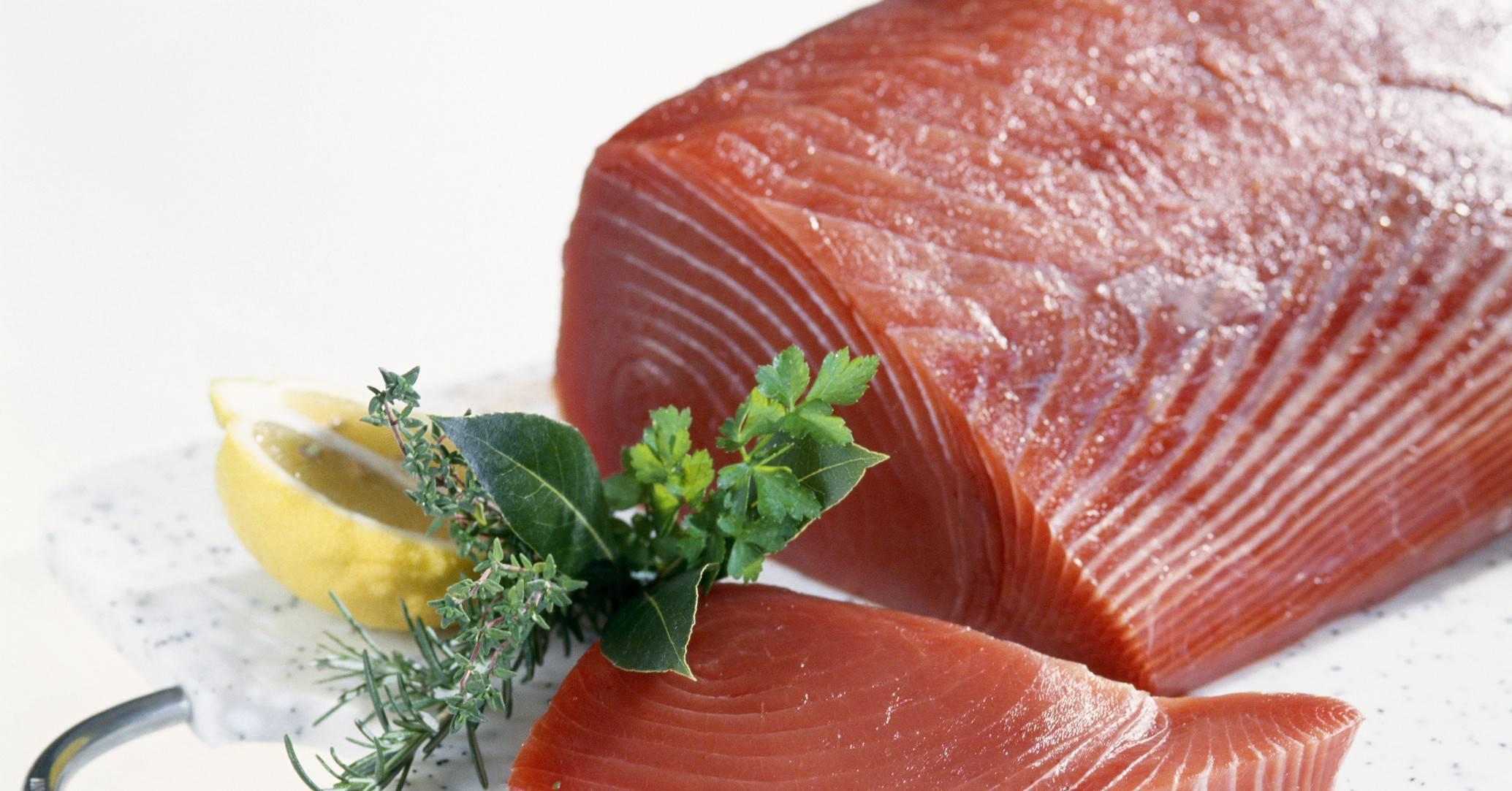 Тунец: польза и вред рыбы