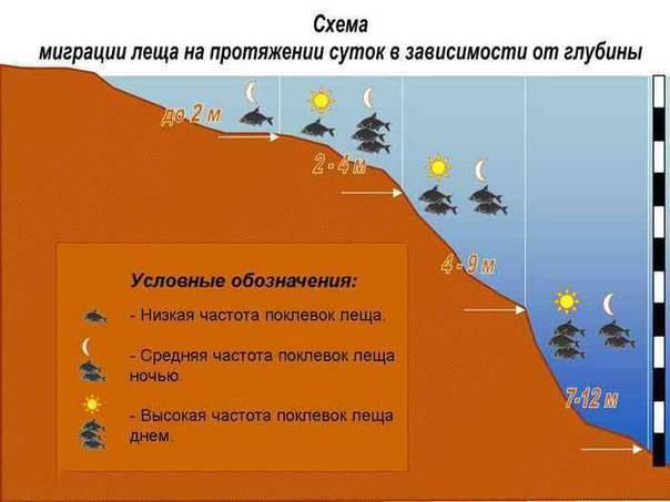 Ловля судака ночью на спиннинг: как, где и на что ловить