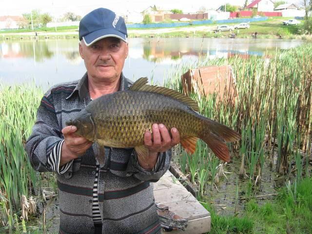 Платная рыбалка в южном федеральном округе россии, каталог платных водоемов