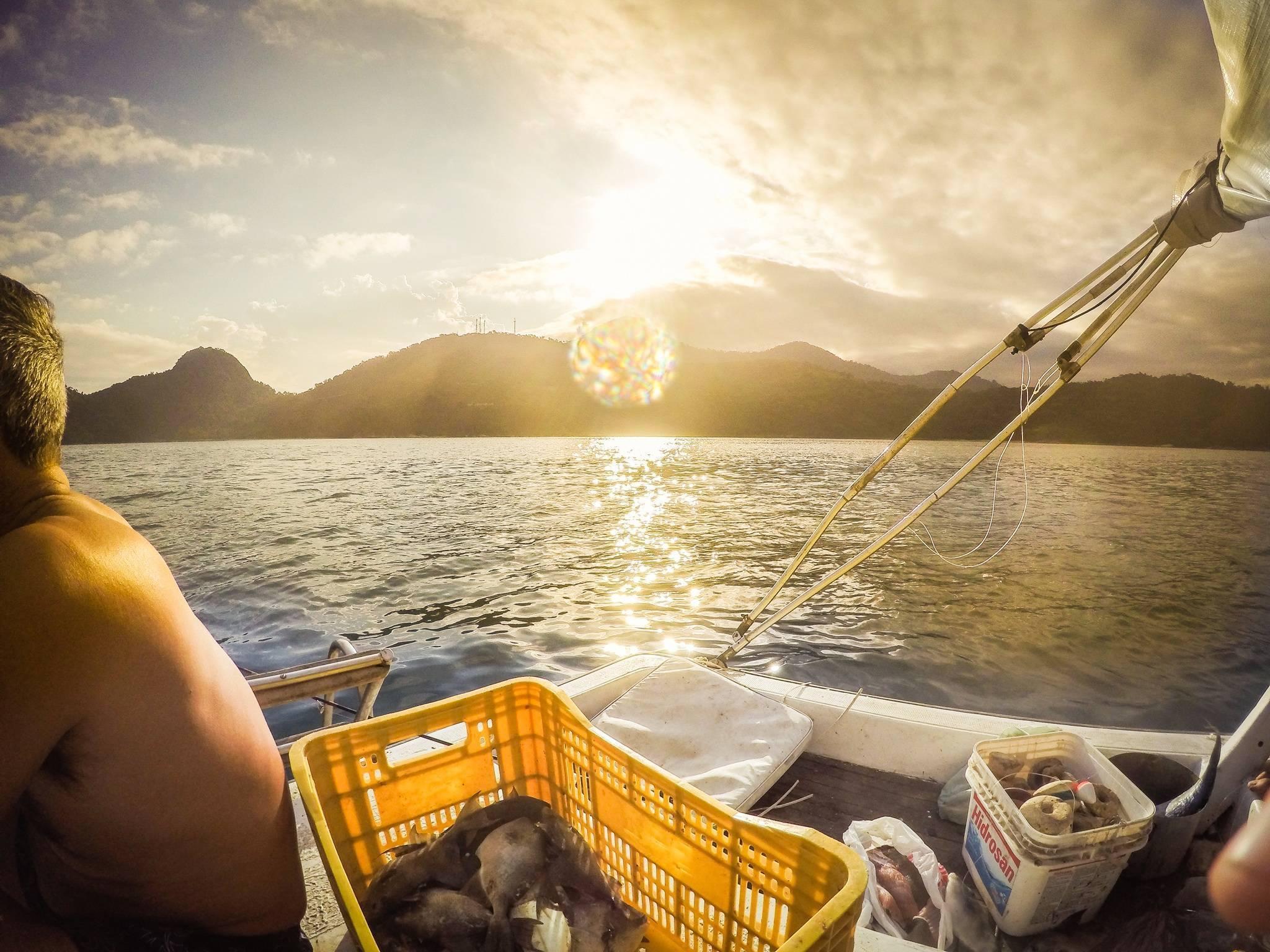 Почему на рыбалку ходят в утренние часы, физиология рыб и другие причины