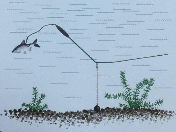 Донка из спиннинга: как сделать для рыбалки, монтаж закидушки